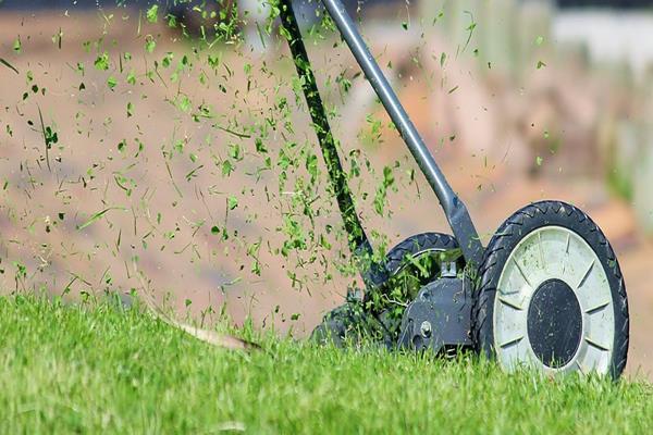 Czym kierować się przy wyborze kosiarki do ogrodu?