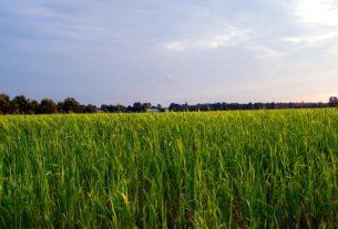 Agroturystyka - warunki założenia gospodarstwa agroturystycznego
