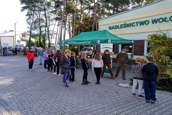 Wołowskie nadleśnictwo rozdawało sadzonki drzewek